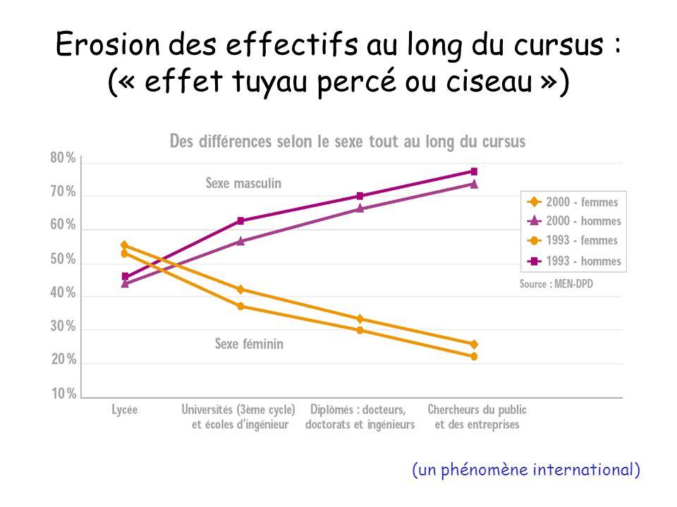 Erosion des effectifs au long du cursus : (« effet tuyau percé ou ciseau ») (un phénomène international)