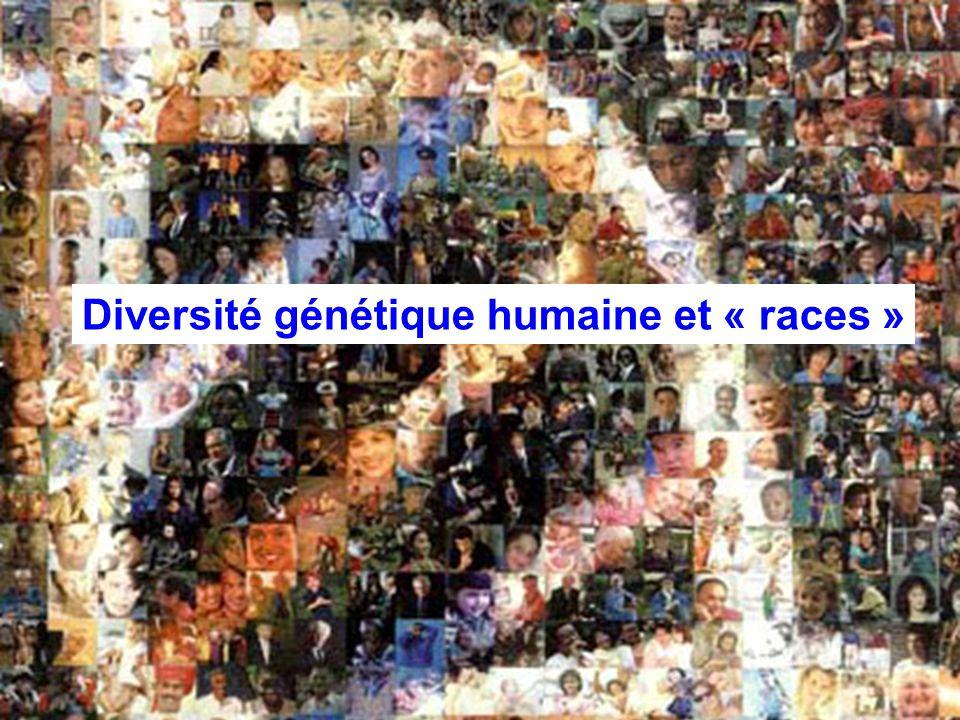 Bertrand JORDAN Informations débats 21 novembre 2006 Diversité génétique humaine et « races »