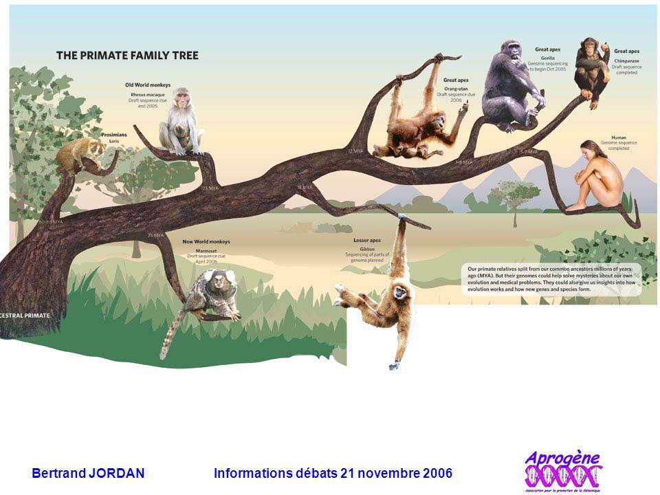 Bertrand JORDAN Informations débats 21 novembre 2006
