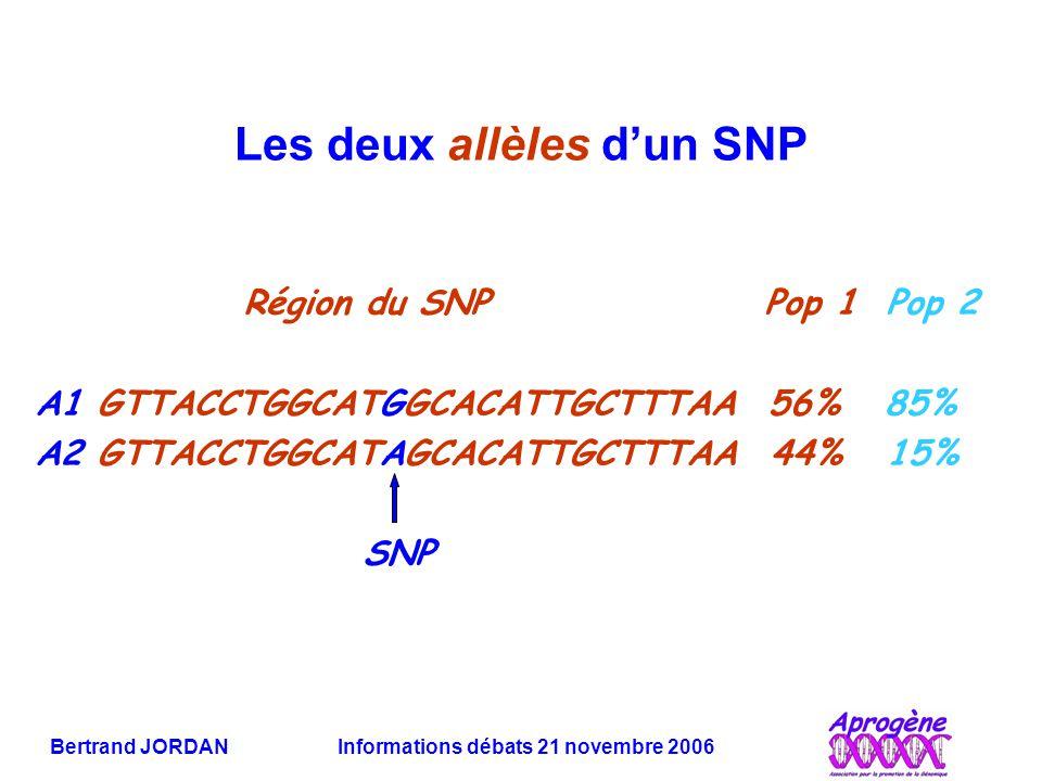 Bertrand JORDAN Informations débats 21 novembre 2006 Les deux allèles d'un SNP Région du SNP Pop 1 Pop 2 A1 GTTACCTGGCATGGCACATTGCTTTAA 56% 85% A2 GTT