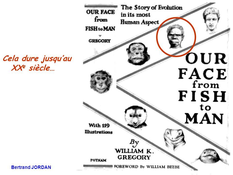 Bertrand JORDAN Informations débats 21 novembre 2006 Cela dure jusqu'au XX e siècle…