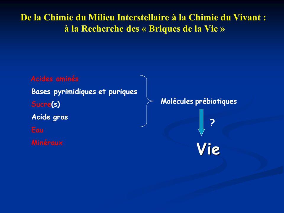 De la Chimie du Milieu Interstellaire à la Chimie du Vivant : à la Recherche des « Briques de la Vie » Acides aminés Bases pyrimidiques et puriques Su
