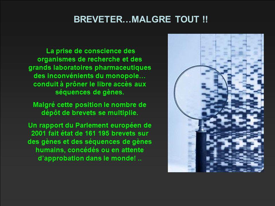 BREVETER…MALGRE TOUT !.