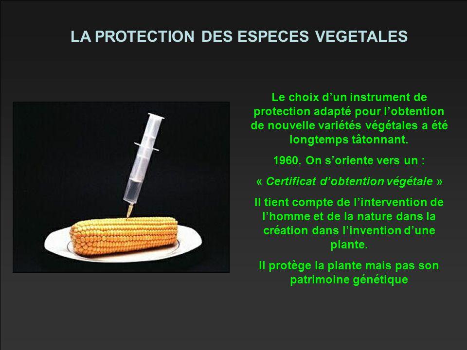 LA PROTECTION DES ESPECES VEGETALES Le choix d'un instrument de protection adapté pour l'obtention de nouvelle variétés végétales a été longtemps tâtonnant.