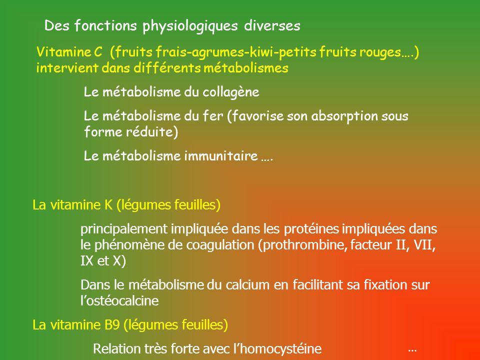 Vitamine C (fruits frais-agrumes-kiwi-petits fruits rouges….) intervient dans différents métabolismes Le métabolisme du collagène Le métabolisme du fer (favorise son absorption sous forme réduite) Le métabolisme immunitaire ….