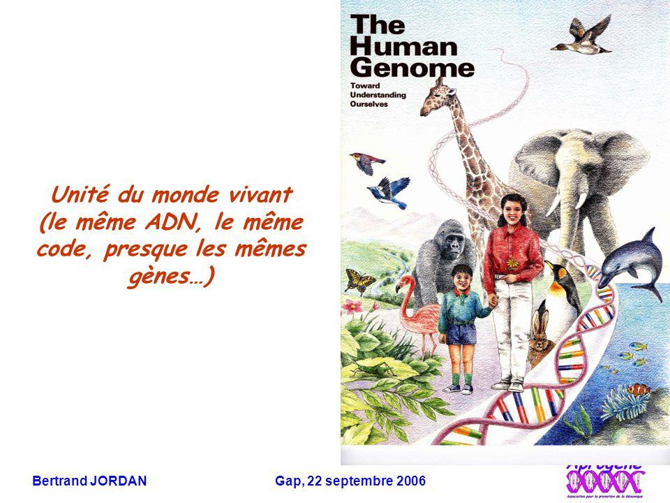 Bertrand JORDAN Gap, 22 septembre 2006 Faible diversité génétique de notre espèce 0,1% de différence entre l'ADN de deux êtres humains Apparition et expansion très récente de l'homme moderne à partir d'une population peu nombreuse