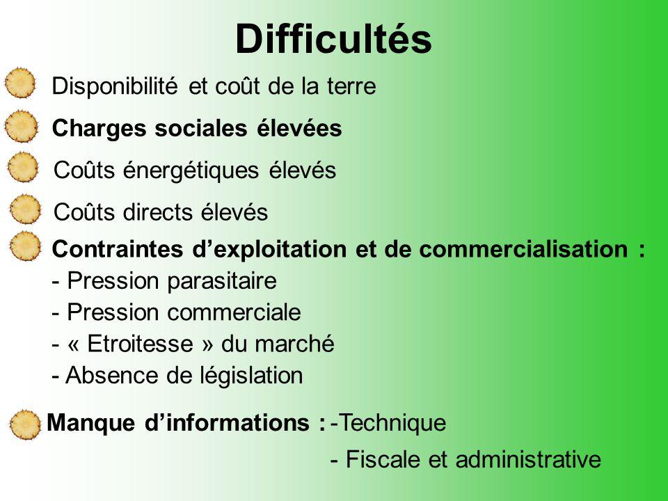 Difficultés Charges sociales élevées Manque d'informations :-Technique - Fiscale et administrative Contraintes d'exploitation et de commercialisation