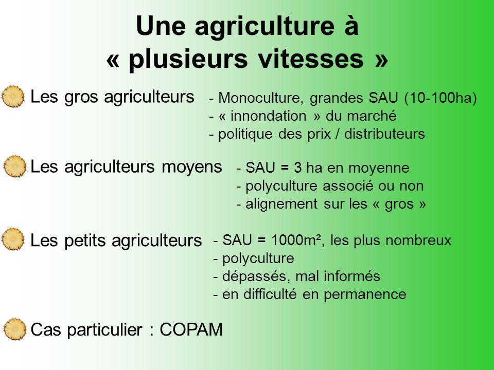 Une agriculture à « plusieurs vitesses » Les gros agriculteurs Les agriculteurs moyens - Monoculture, grandes SAU (10-100ha) - « innondation » du marc