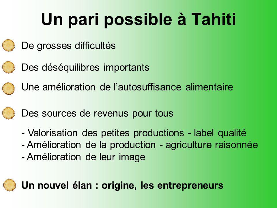 Un pari possible à Tahiti De grosses difficultés Des déséquilibres importants Une amélioration de l'autosuffisance alimentaire Des sources de revenus