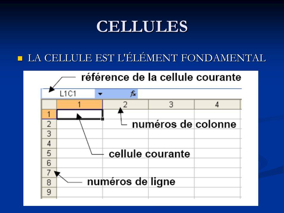 CELLULES LA CELLULE EST L'ÉLÉMENT FONDAMENTAL LA CELLULE EST L'ÉLÉMENT FONDAMENTAL
