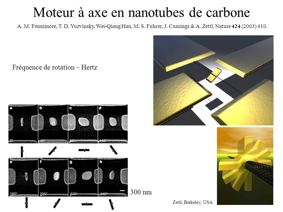 Moteur à axe en nanotubes de carbone Zettl, Berkeley, USA 300 nm A. M. Fennimore, T. D. Yuzvinsky, Wei-Qiang Han, M. S. Fuhrer, J. Cumings & A. Zettl,