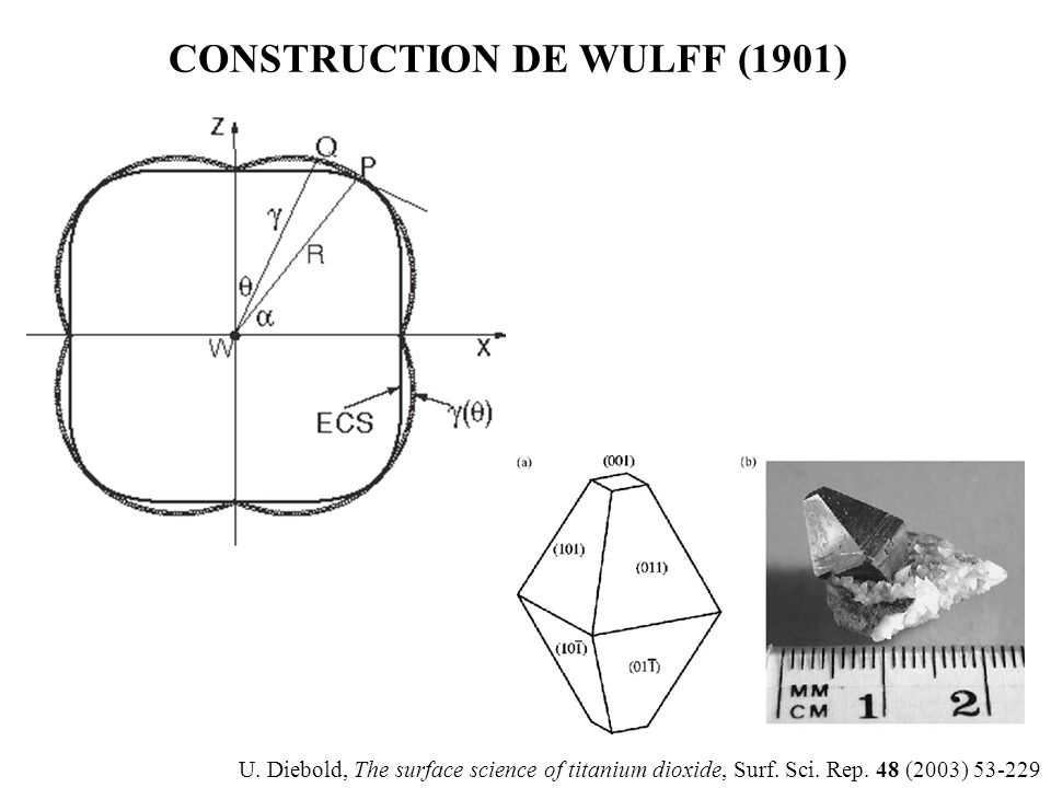 CONSTRUCTION DE WULFF (1901) U. Diebold, The surface science of titanium dioxide, Surf. Sci. Rep. 48 (2003) 53-229