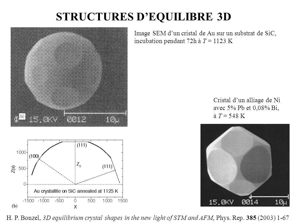 STRUCTURES D'EQUILIBRE 3D H. P. Bonzel, 3D equilibrium crystal shapes in the new light of STM and AFM, Phys. Rep. 385 (2003) 1-67 Image SEM d'un crist