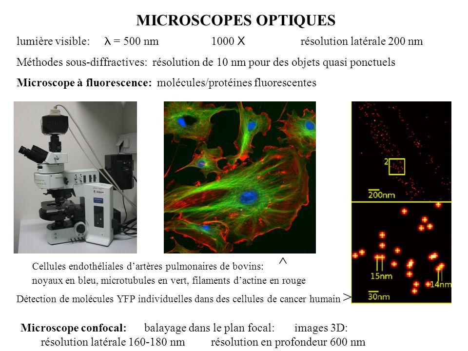 MICROSCOPES OPTIQUES lumière visible:  = 500 nm 1000 X résolution latérale 200 nm Méthodes sous-diffractives: résolution de 10 nm pour des objets qua