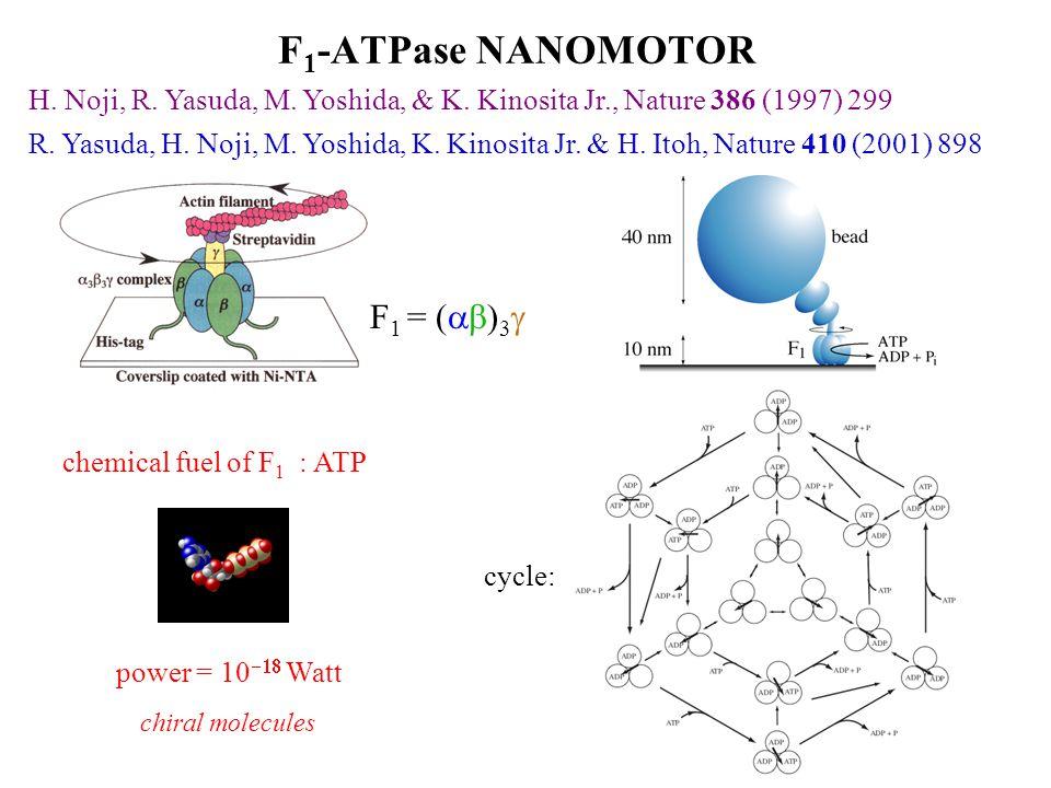 F 1 -ATPase NANOMOTOR H. Noji, R. Yasuda, M. Yoshida, & K.