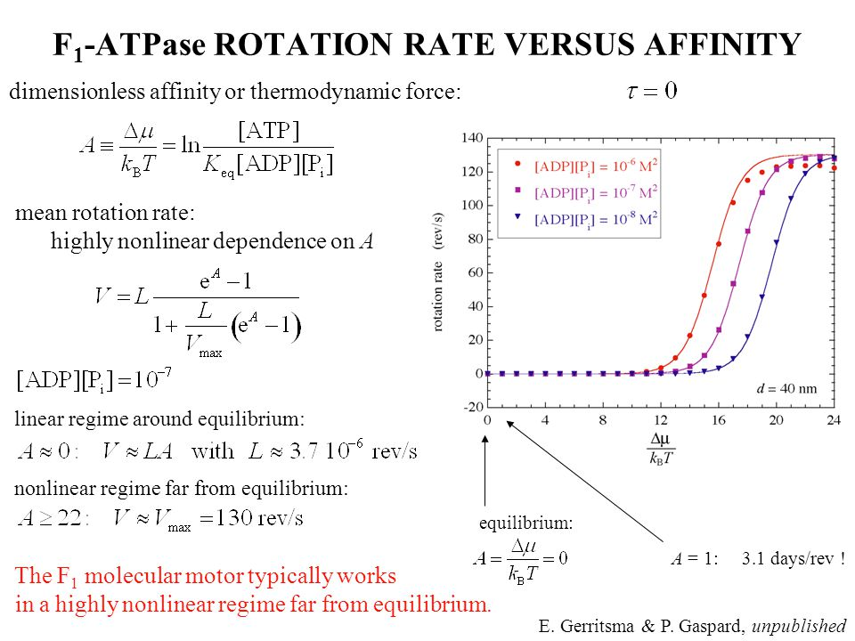 mean rotation rate: highly nonlinear dependence on A linear regime around equilibrium: nonlinear regime far from equilibrium: The F 1 molecular motor typically works in a highly nonlinear regime far from equilibrium.