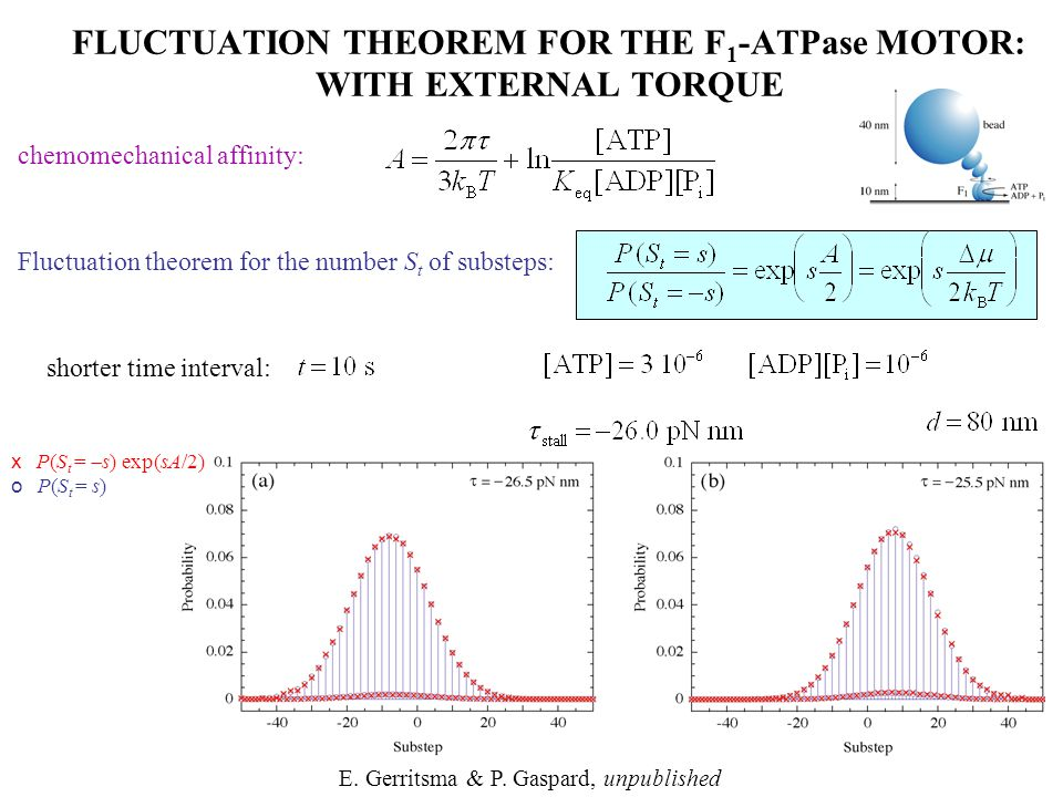 chemomechanical affinity: Fluctuation theorem for the number S t of substeps: FLUCTUATION THEOREM FOR THE F 1 -ATPase MOTOR: WITH EXTERNAL TORQUE E. G