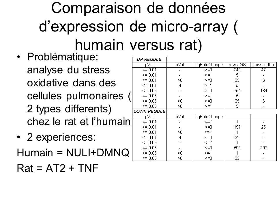 Quelques résultats de comparaisons…selon les Gene Symbol GeneSymbol_rat = Gene Symbol_humain Ici, on suppose une orthologie probable