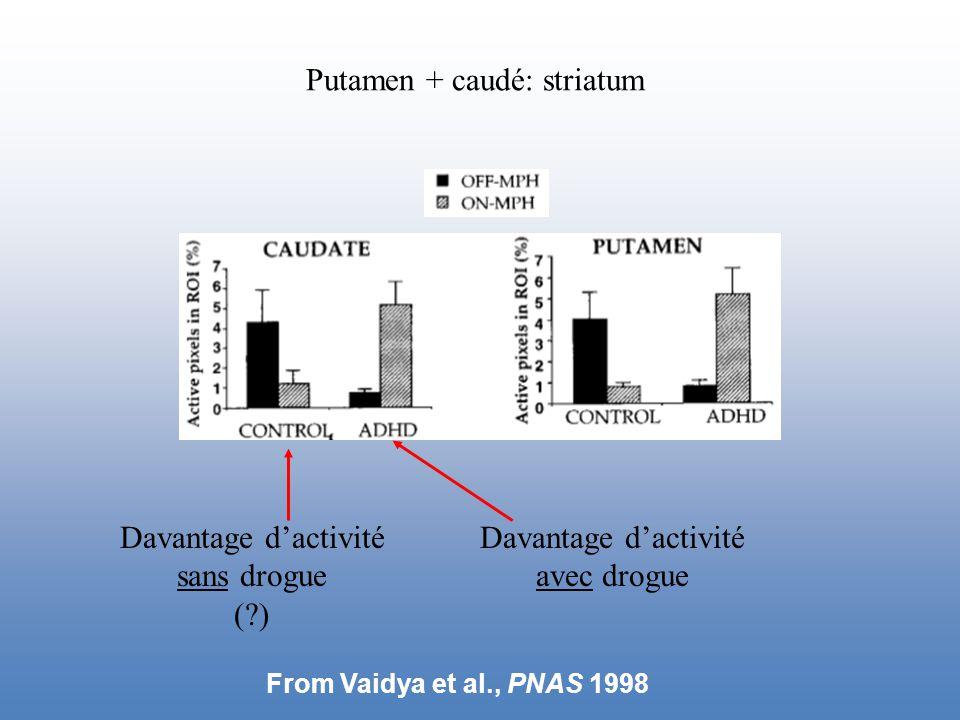 Putamen + caudé: striatum Davantage d'activité sans drogue ( ) Davantage d'activité avec drogue From Vaidya et al., PNAS 1998