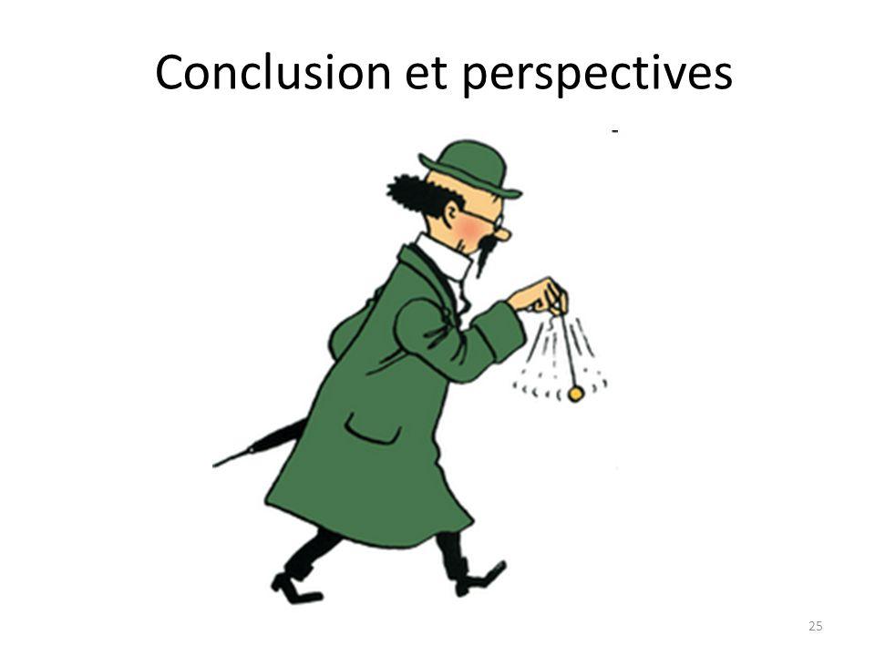 25 Conclusion et perspectives