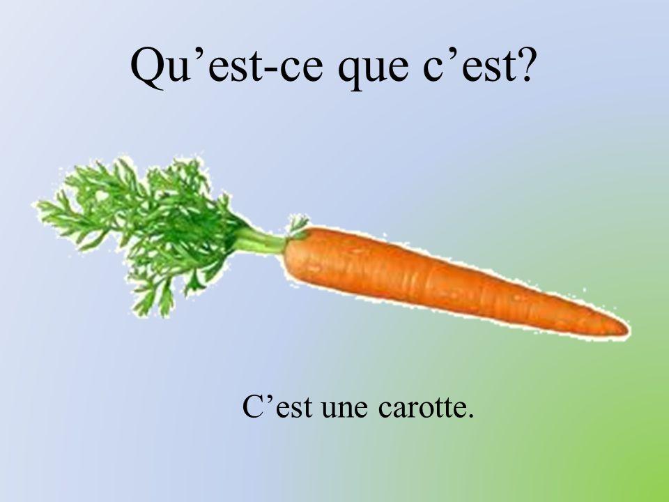 Qu'est-ce que c'est? C'est une carotte.