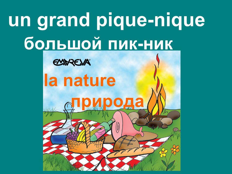 un grand pique-nique большой пик-ник la nature природа
