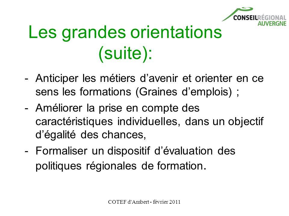 COTEF d'Ambert - février 2011 Les grandes orientations (suite): - Anticiper les métiers d'avenir et orienter en ce sens les formations (Graines d'empl