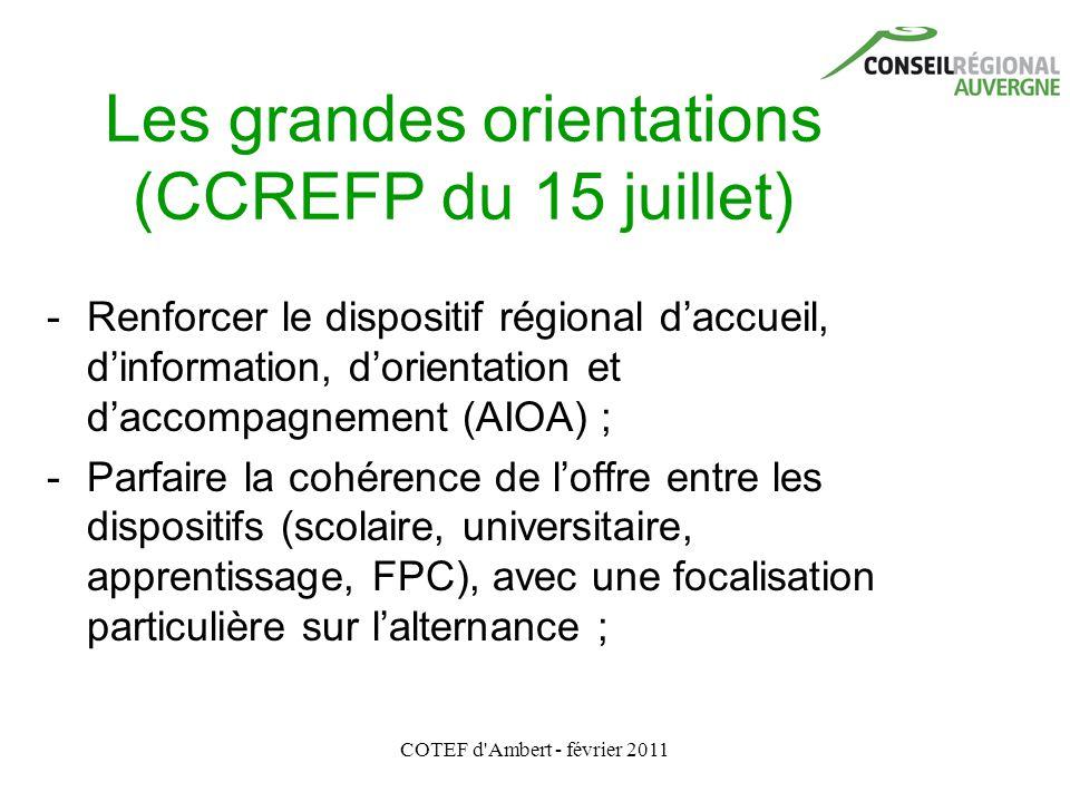 COTEF d'Ambert - février 2011 Les grandes orientations (CCREFP du 15 juillet) - Renforcer le dispositif régional d'accueil, d'information, d'orientati