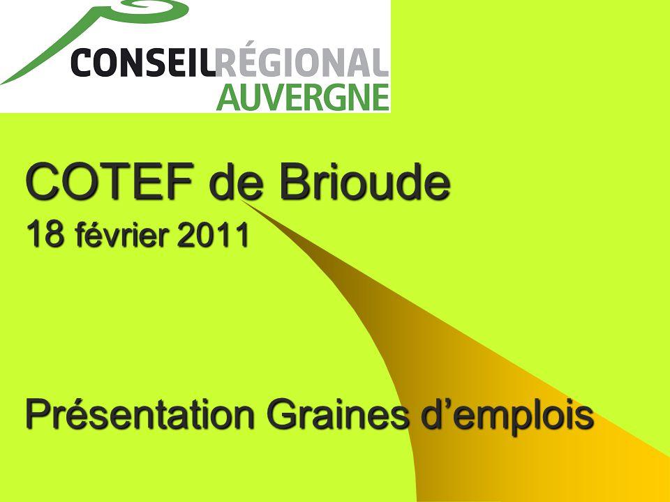 COTEF de Brioude 18 février 2011 Présentation Graines d'emplois