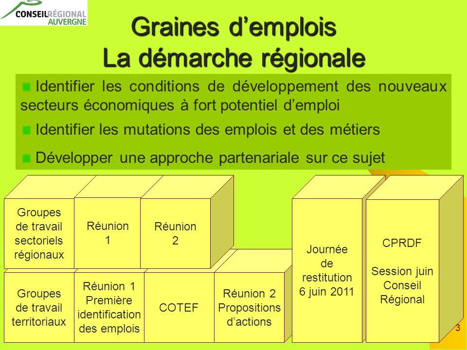 3 Groupes de travail territoriaux Réunion 1 Première identification des emplois Graines d'emplois La démarche régionale Groupes de travail sectoriels