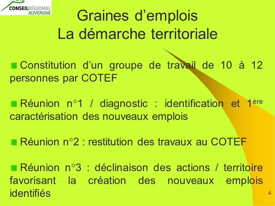 4 Graines d'emplois La démarche territoriale Constitution d'un groupe de travail de 10 à 12 personnes par COTEF Réunion n°1 / diagnostic : identificat