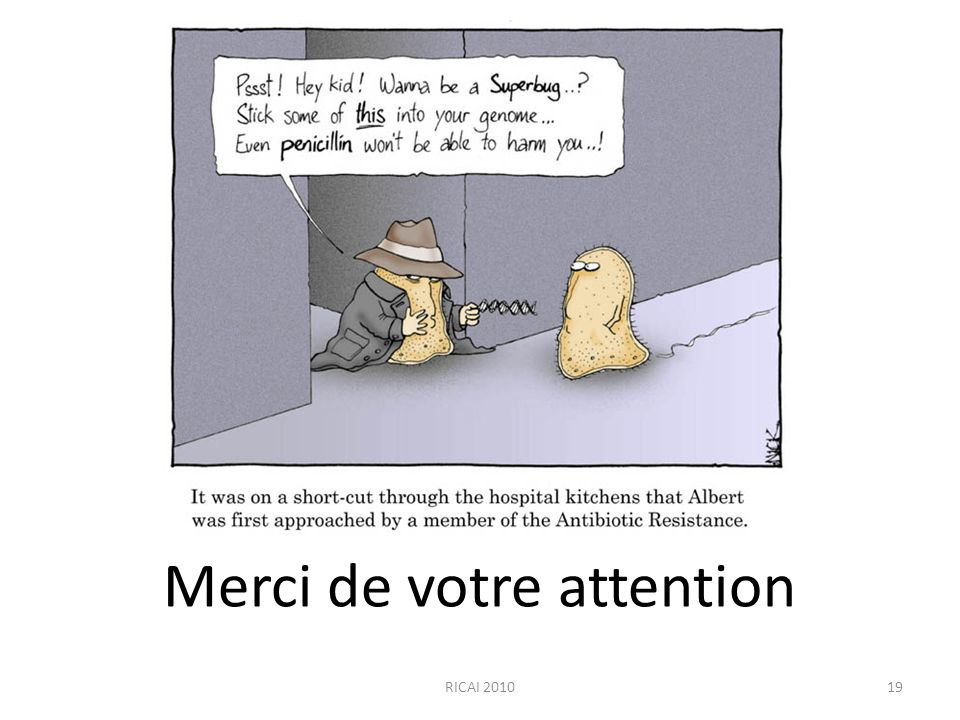 Merci de votre attention RICAI 201019
