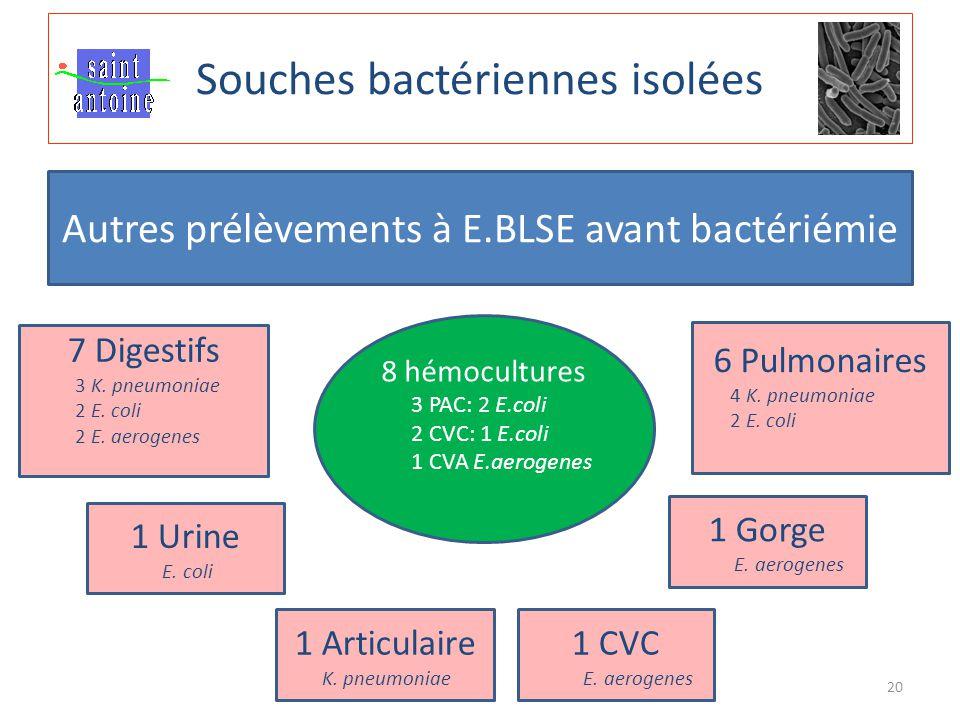 20 Souches bactériennes isolées Autres prélèvements à E.BLSE avant bactériémie 7 Digestifs 3 K. pneumoniae 2 E. coli 2 E. aerogenes 6 Pulmonaires 4 K.