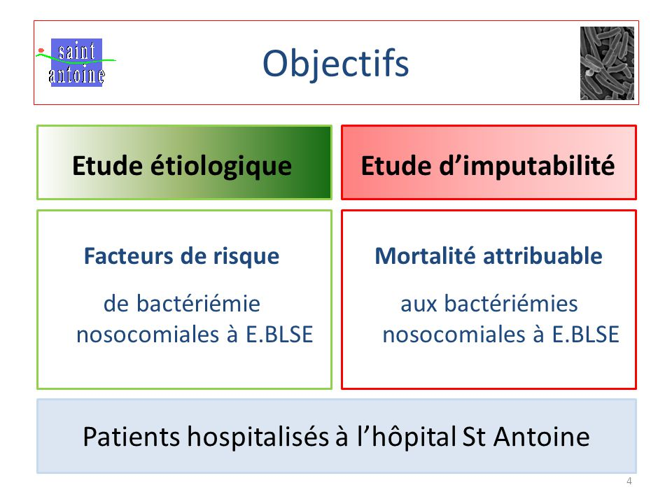Objectifs Etude d'imputabilité Mortalité attribuable aux bactériémies nosocomiales à E.BLSE Etude étiologique Facteurs de risque de bactériémie nosocomiales à E.BLSE Patients hospitalisés à l'hôpital St Antoine 4