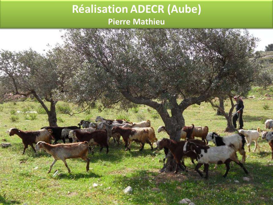 Réalisation ADECR (Aube) Pierre Mathieu