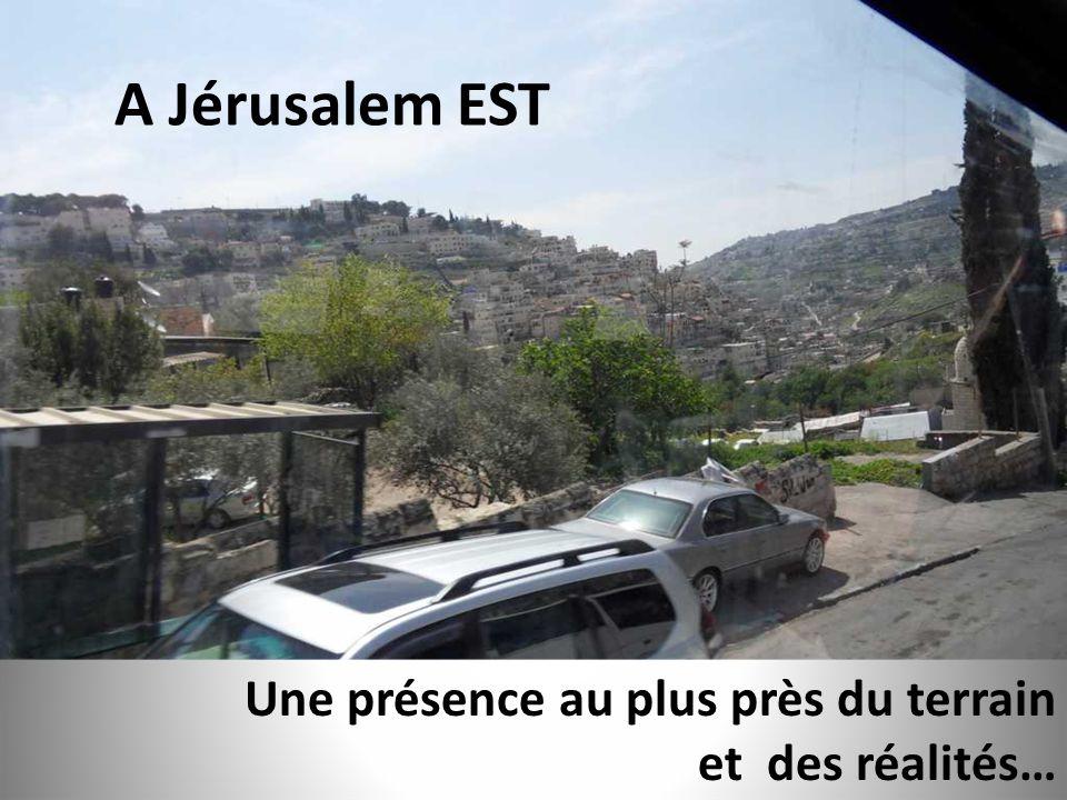 Une présence au plus près du terrain et des réalités… A Jérusalem EST