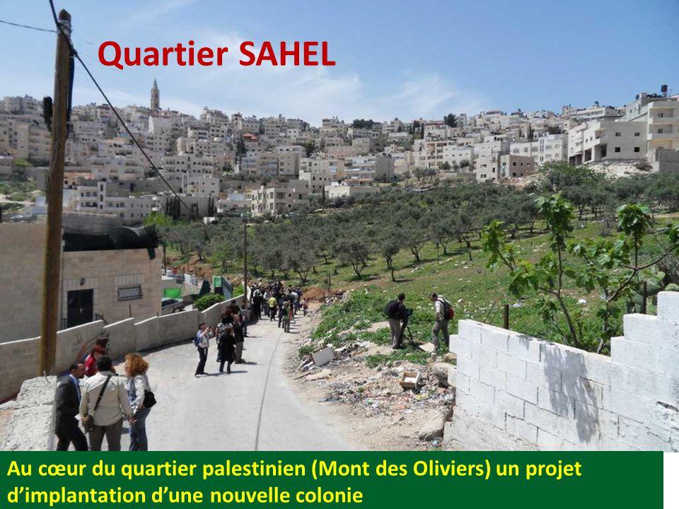Quartier SAHEL Au cœur du quartier palestinien (Mont des Oliviers) un projet d'implantation d'une nouvelle colonie