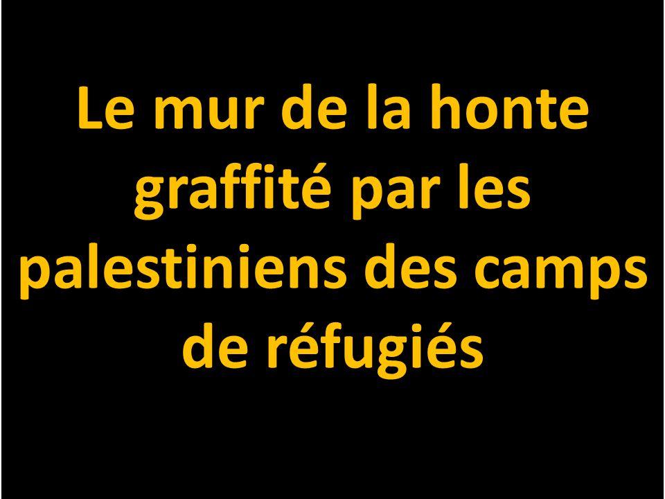 Le mur de la honte graffité par les palestiniens des camps de réfugiés