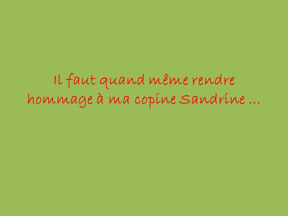Il faut quand même rendre hommage à ma copine Sandrine …
