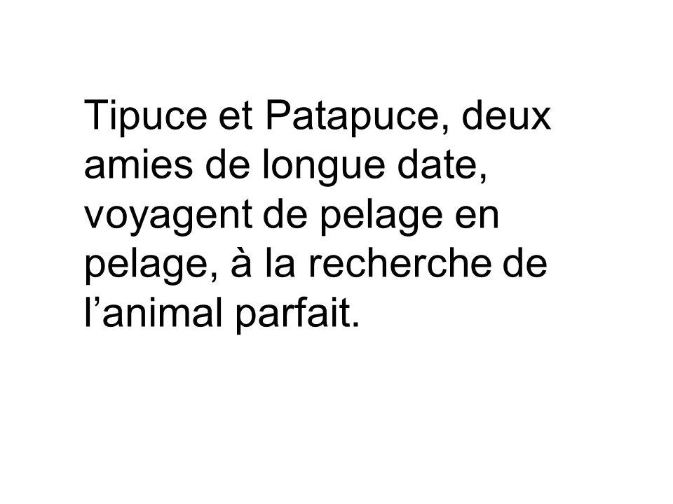 Tipuce et Patapuce, deux amies de longue date, voyagent de pelage en pelage, à la recherche de l'animal parfait.
