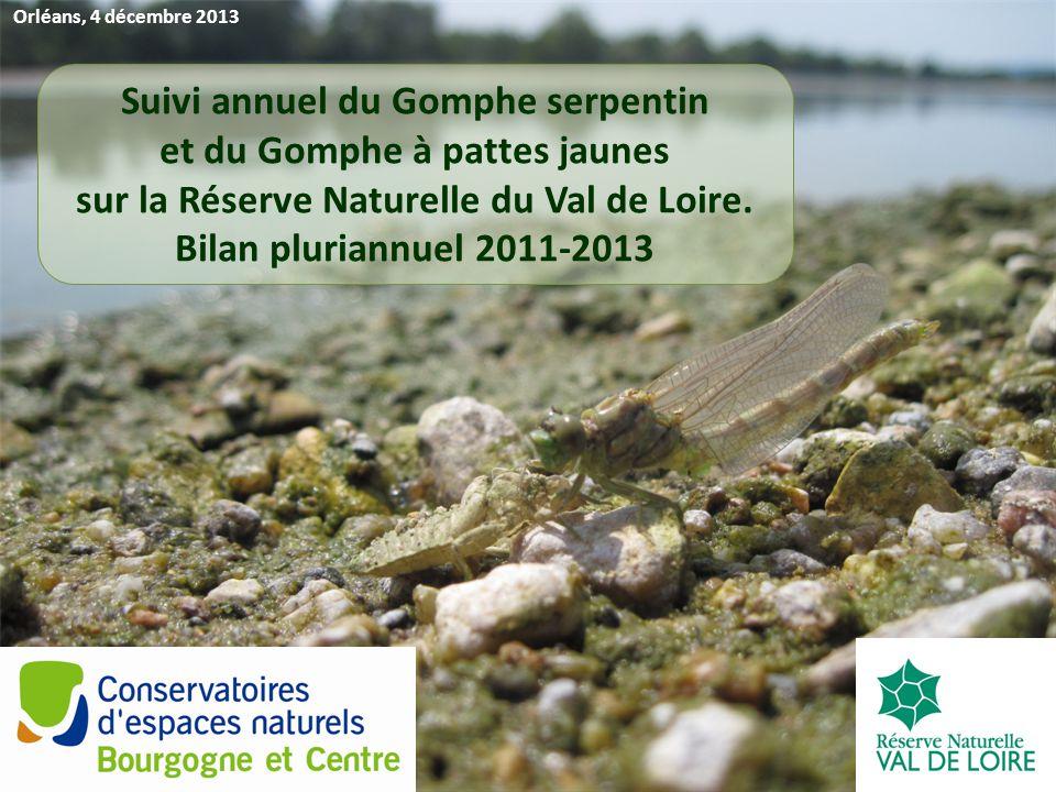 Orléans, 4 décembre 2013 Suivi annuel du Gomphe serpentin et du Gomphe à pattes jaunes sur la Réserve Naturelle du Val de Loire.
