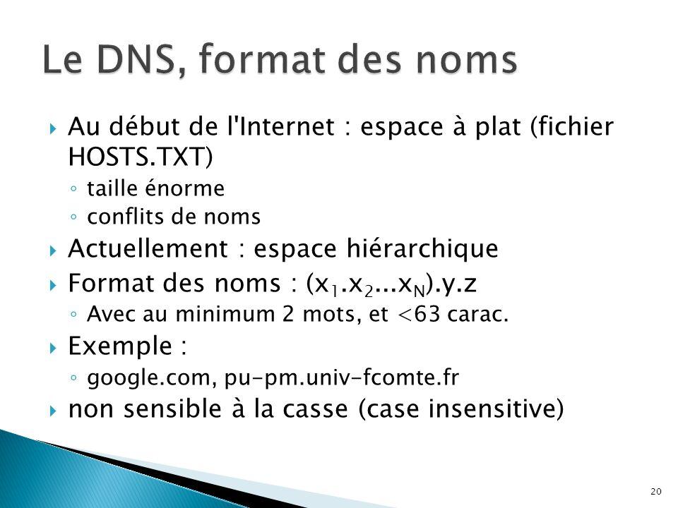 Au début de l'Internet : espace à plat (fichier HOSTS.TXT) ◦ taille énorme ◦ conflits de noms  Actuellement : espace hiérarchique  Format des noms