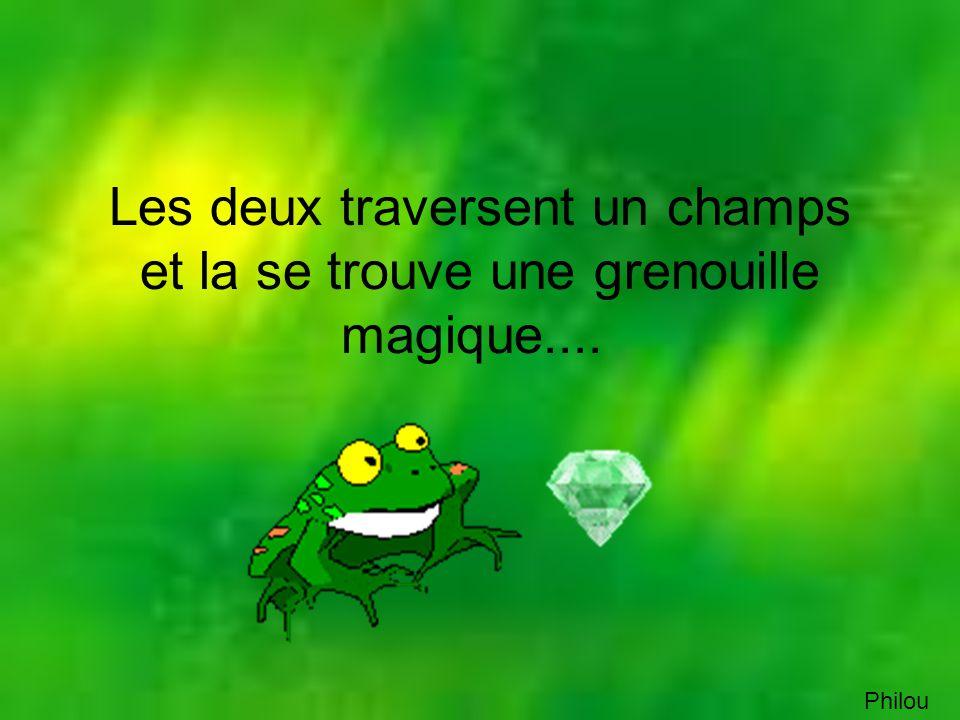 La grenouille : pas de problème, ton vœux est exhausse...