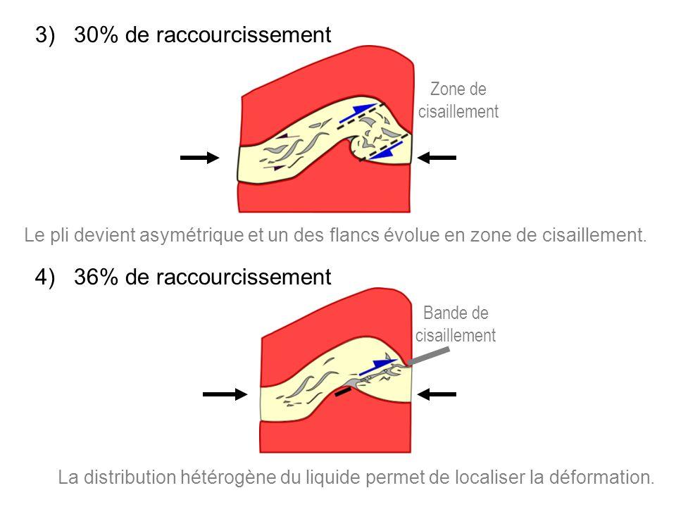 4) 36% de raccourcissement 3) 30% de raccourcissement Le pli devient asymétrique et un des flancs évolue en zone de cisaillement.