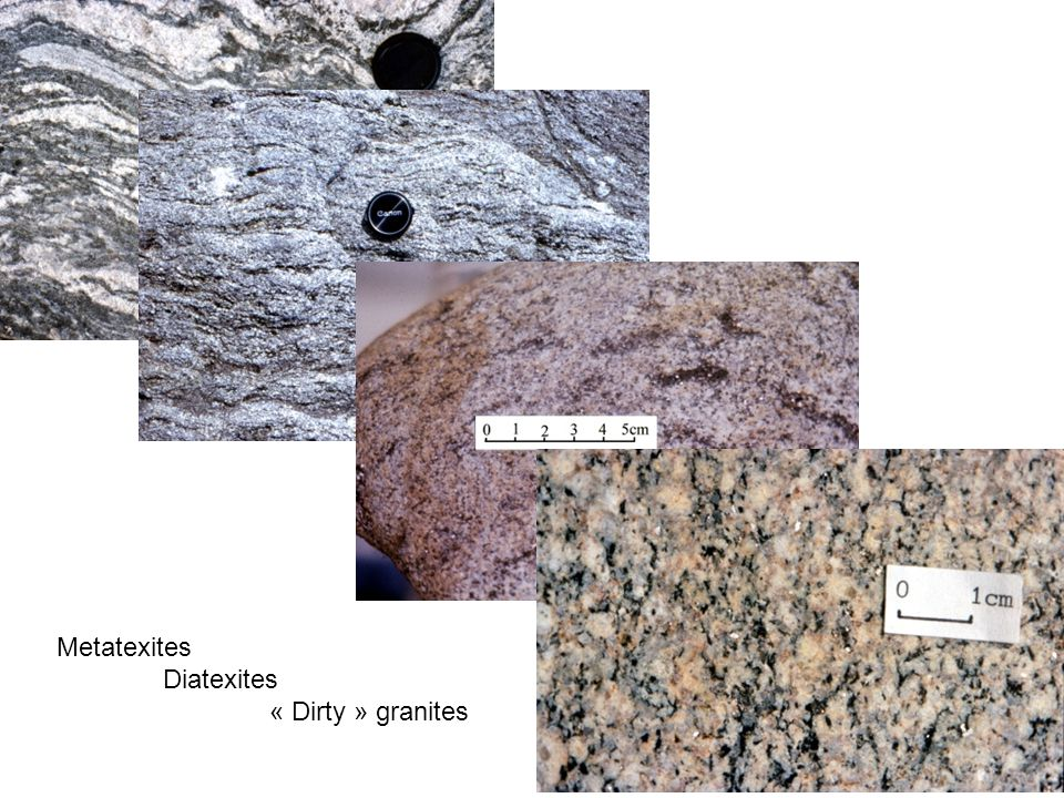 Metatexites Diatexites « Dirty » granites