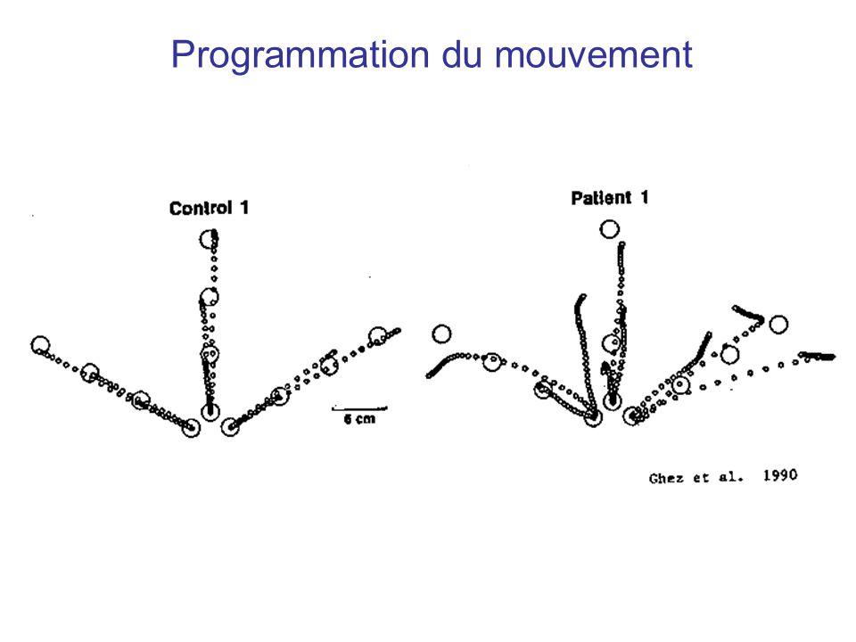 Programmation du mouvement