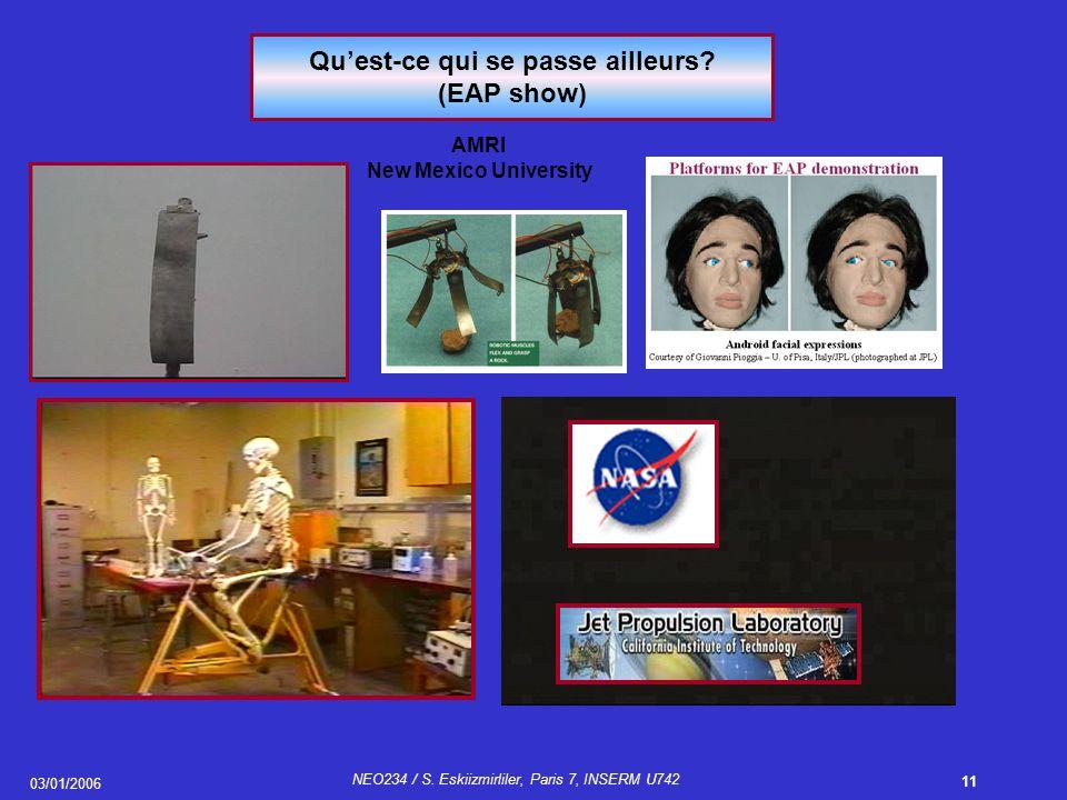 03/01/2006 NEO234 / S.Eskiizmirliler, Paris 7, INSERM U742 11 Qu'est-ce qui se passe ailleurs.