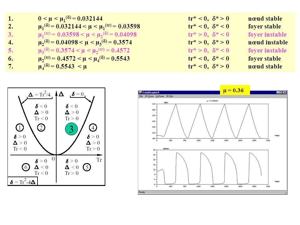 1.0 0 nœud stable 2.µ 1 (  ) = 0.032144 < µ < µ 1 (tr) = 0.03598tr* < 0,  * < 0foyer stable 3.µ 1 (tr) = 0.03598 0,  * < 0foyer instable 4.µ 2 ( 
