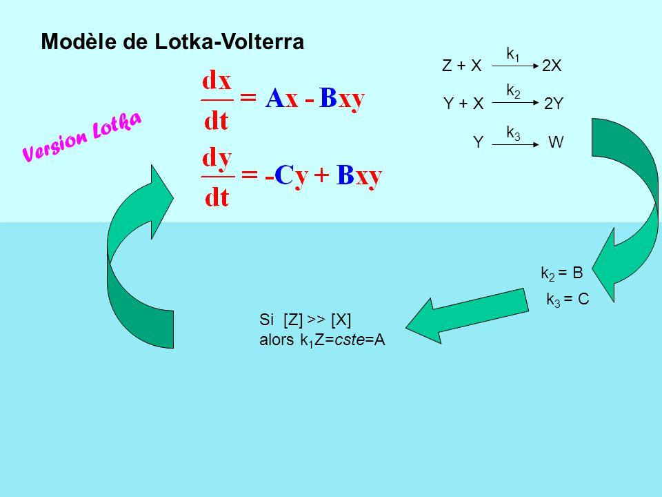 XY La valeur des coefficients de diffusion influe sur la longueur d'onde des patterns.