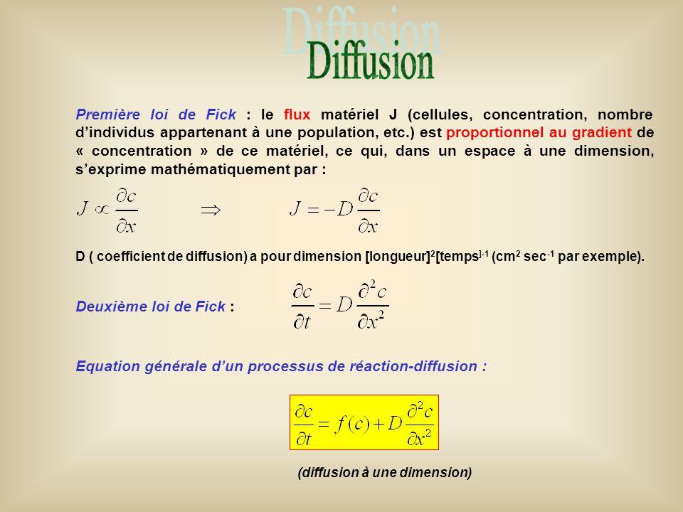 Première loi de Fick : le flux matériel J (cellules, concentration, nombre d'individus appartenant à une population, etc.) est proportionnel au gradie